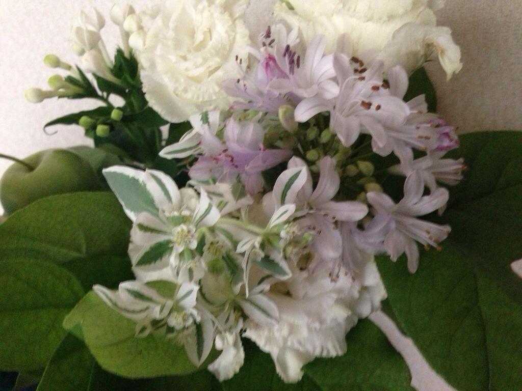 「ドミニック・ローホーさんに憧れ、ミニマリストを目指す方への記事」(美しい白い花のブーケ)