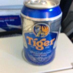 ベルリン出張2015春夏5-6「飛行機内では特別機内食をいただく」(Tiger)