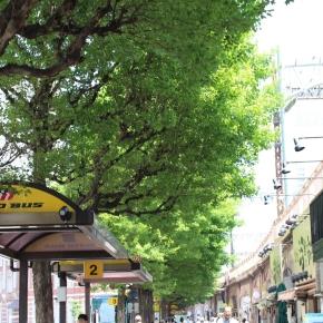 「はとバスに乗って東京観光」(はとバス乗り場は東京丸の内南口スグ)