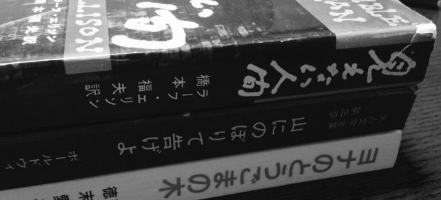 ミニマリストの初読乱読記録2タイトル 02132019