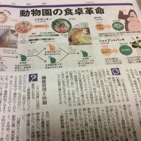 2016年1月10日日曜日 朝日新聞「動物園の食卓革命 バナナ禁止、サル健康に」