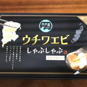 長崎平戸のウチワエビ