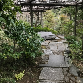 Nezu Museum Garden 根津美術館