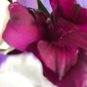 紫 パープル 花 ブーケ
