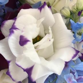 紫 パープル 花 ブーケ フラワー