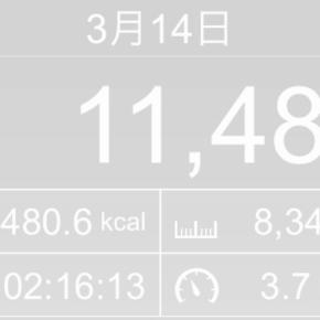 【note更新】8343m歩いた2019年3月14日木曜日(実際はプラス1700m)
