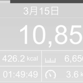 【note更新】6656m歩いた2019年3月15日金曜日