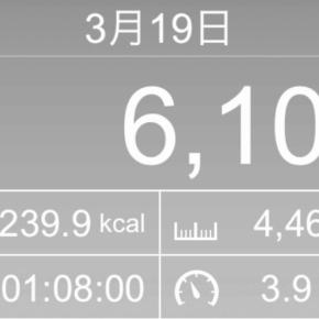 【note更新】4497m歩いた2019年3月19日火曜日(歩いている途中、十代半ばから続く疾患の発作が出て引き返す…)
