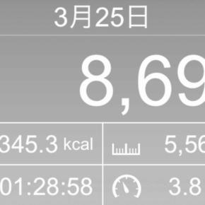 【note更新】5564m歩いた2019年3月25日月曜日(7000mコースを歩いたからこの数字は間違い)