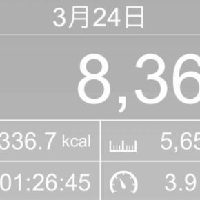 【note更新】5659m歩いた2019年3月24日日曜日