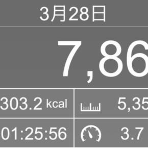 【note更新】5350m歩いた2019年3月28日木曜日