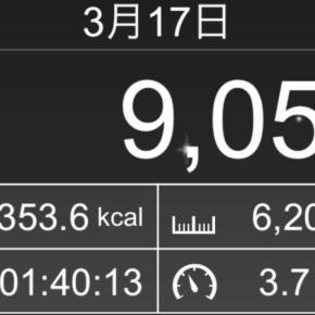 【note更新】6201m歩いた2019年3月17日日曜日