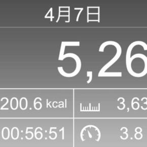 【note更新】3630m歩いた2019年4月7日日曜日